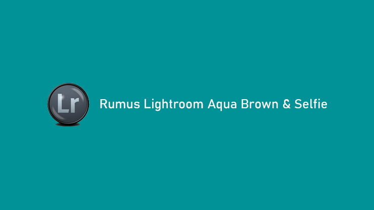 Rumus Lightroom Aqua Brown Selfie