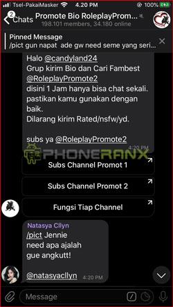 3 Silahkan Ikuti Instruksi dari RP Telegram