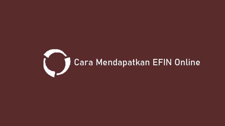 Cara Mendapatkan EFIN Online untuk Badan dan Pribadi