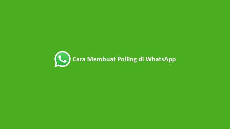 Cara Membuat Polling di WhatsApp