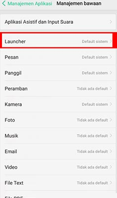 ganti launcher hp
